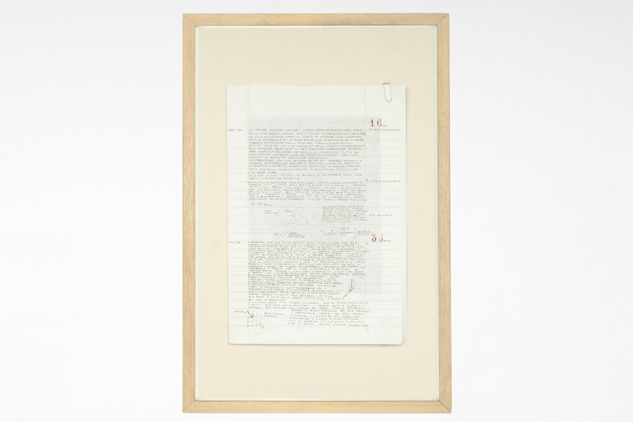Testi scritti su supporto cartaceo, 30 x 45 cm, copia unica