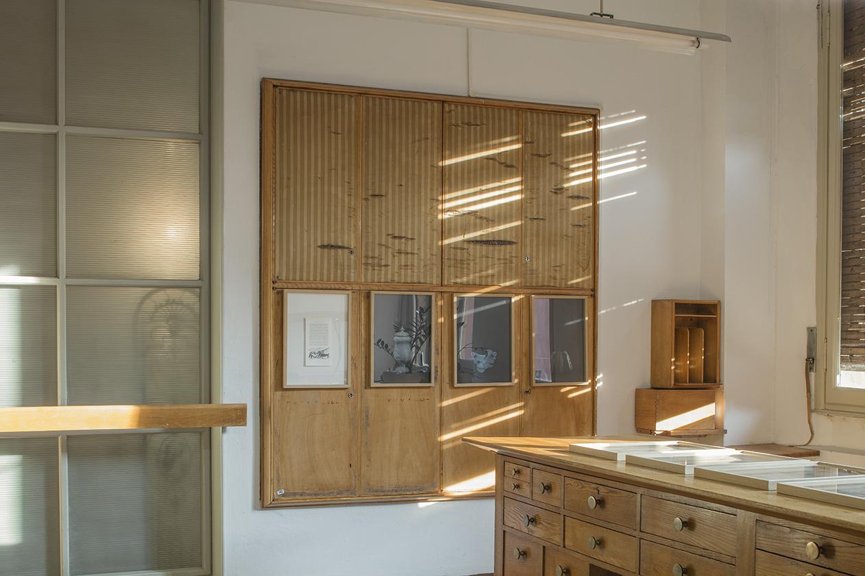 Ex Atelier Corradi, Bologna