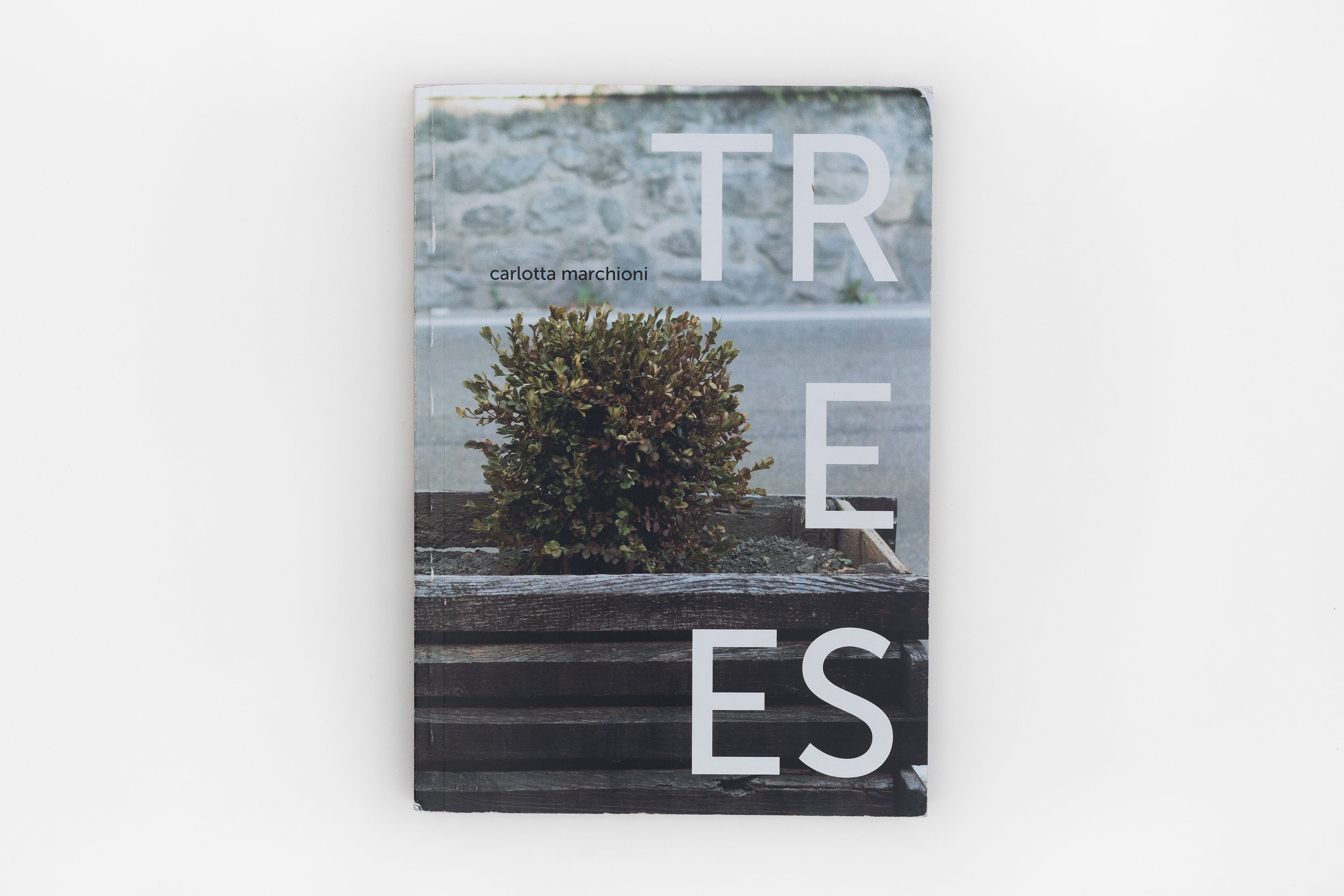 Carlotta Marchioni - Trees / Esame Triennio ISIA